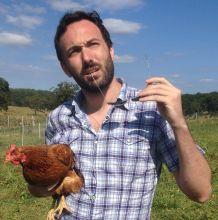 holding_chicken